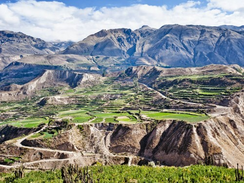 Colca Canyon in Peru